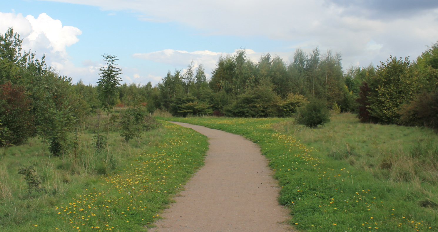Pathway through trees and grassland at Button