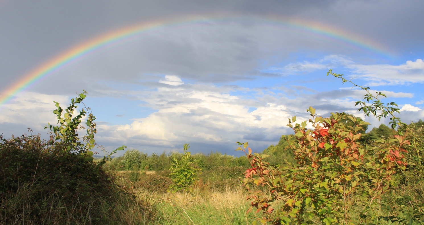 Rainbow over Folly Wood, Lidlington