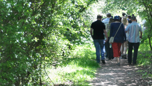 Group walk through the Millennium Country Park in summer